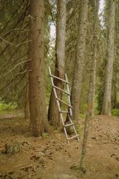 Горска стълба
