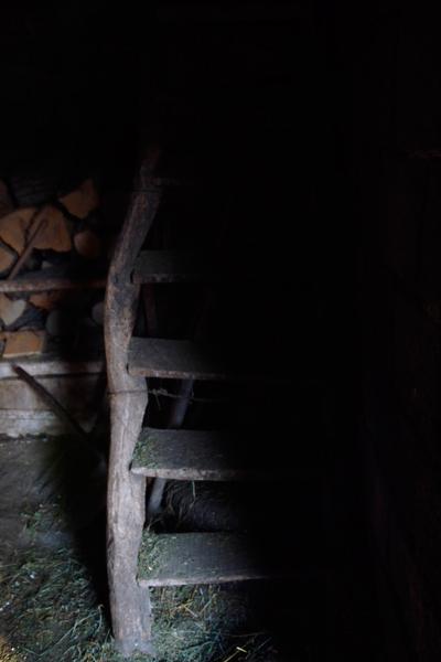 Старите стъпала охкат и припукват под внимателните стъпки.